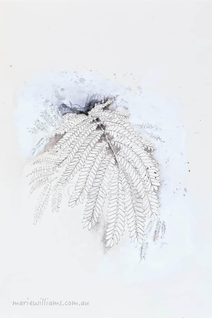 botanical art by Gela-Marie Williams